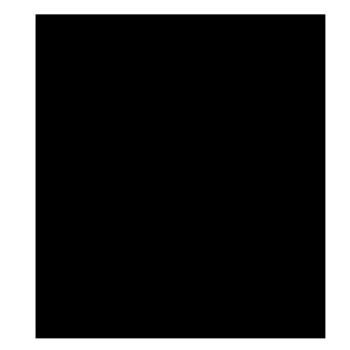BetonKanoRace 2018